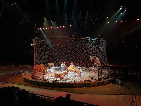 Ringling Bros Barnum Bailey Circus Closing Performance